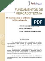 Mi Modelo Sobre El Ambiente de La Mercadotecnia_ Rosalez Perez Araceli_22092012