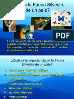 faunasilvestre-120430225819-phpapp01