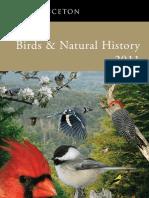 Birds 11