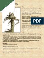 The Druid Pf