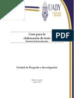 Guia de Tesis Profesionalizante 2010