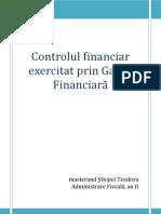 Controlul Exercitat de Garda Financiara