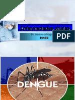 Clase 22. Enfermedades Virales. Dr. Hidalgo