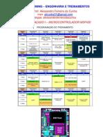 MATERIAL AUXILIAR PARA CURSO AVANÇADO I MSP430