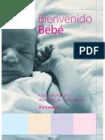 Bienvenido Bebe