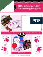 2009 Valentine Flyer