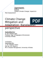 Cc Adaptation and Mitigation, BD Prspectvl