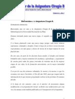 Newsletter Cirugía B 2012  (Año 5 Numero 6)