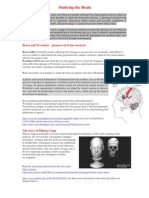 studying brain introduction