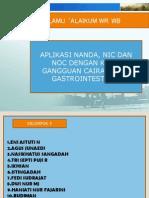 Presentasi Aplikasi Nanda, Nic, Noc (2)