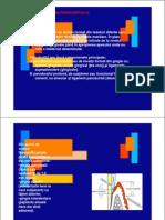 Suport de Curs Parodontologie an v MD Conf DrConstanta Mocanu [Compatibility Mode]