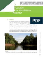 15.Situación de la Amazonía Peruana