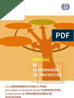 Manual Elaboracion Proyectos [Bol]