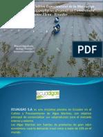 ECUAALGAS S.a Presentacion