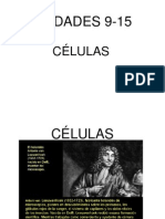 BLOQUE2_CÉLULAS_PROCARIOTAS