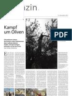 Kampf um Oliven | Von Ulrike Scleicher. 17.11.2012 - Rabbis fur Menschenrechte