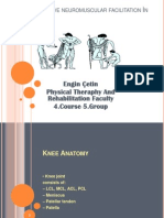 Engin Çetin-Pnf in the knee