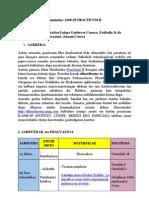 programazioa_2009