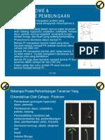 Bab 9-Phytochrome Dan Mekanisme Pembungaan Krt