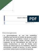 Biosíntesis de CHOS y Lípidos