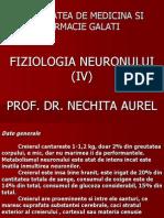 Curs IV -Fiziologia Neuronului