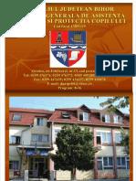 strategie_2009-2011