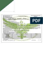 Plan de Clase Hbp Actividad 12