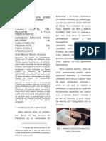 DIBUJO DIGITAL DEL MATERIAL LITICO PREHISTÓRICO