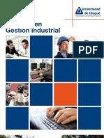 Plagable Maestria Gestión Industrial