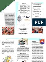 SIGNIFICADOS Y PERCEPCIONES DE CIUDADANÌA