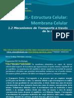 Presentación 02 - La Estructura Celular
