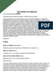 Diccionario de Estudios Latinoamericanos (Entero)