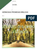 predica HERMOSAS PROMESAS BÍBLICAS  Una Taza de Café con Dios