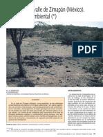 Arsénico en el valle de Zimapán