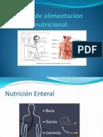 Vias de Alimentacion Nutricional