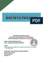 PROBLEMAS DE LA NIÑEZ EN EL AMBITO EDUCATIVO LOS CASOS DEL BULLYING.