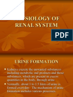 Physiology, Lecture 8, The Renal System (lEcture Notes