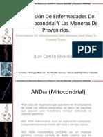 Transmicion De Enfermedades Del ADN Mitocondrial Y Maneras De Prevenirlos. Juan Camilo Silva Alarcon