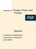 Bacteria, Viruses, Protists, And Prions