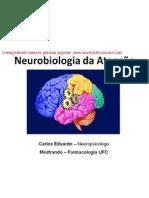 File1-NeurobiologiaDaAtencao