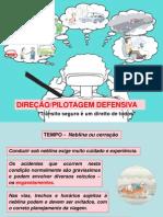 Direção Defensiva II