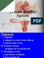 Ovary (Lect 19-11)