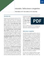 20-Infecciones_perinatales-congenitas