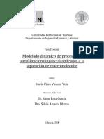Modelado dinámico de procesos de ultrafiltracion tangencial aplicados a la separación de macromoléculas