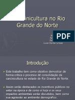 A Carcinicultura No Rio Grande Do Norte