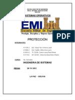 PROTECCION_RESUMEN