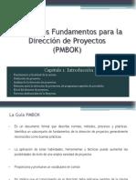 La Guía PMBOK