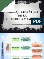 DRENAJE LINFÁTICO DE LA GLÁNDULA MAMARIA