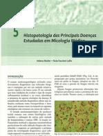 05 - Histopatologia das principais doenças estudadas em micologia médica