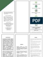 Trifoliar Informativo Vi Simposio Latinoamericano de Quimica